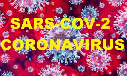 Coronavirus-A